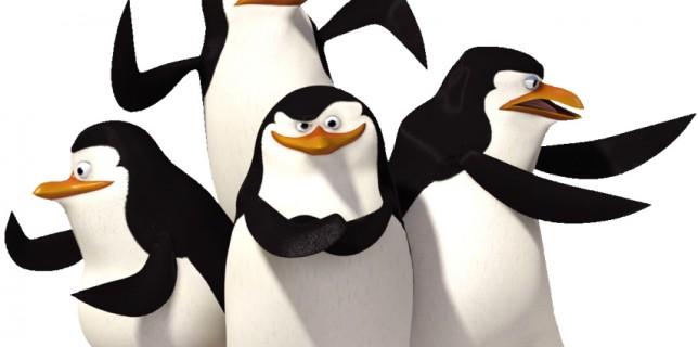 pingouins madagascar