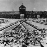 Libération d'Auschwitz, 70 ans après