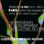 Neurosciences et développement intellectuel de l'enfant au programme du 8e Brain Forum