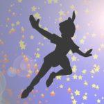 Le patron de PME, ou le syndrome de Peter Pan